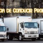 Licencia de Conducir Profesional en Argentina