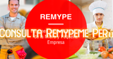 Consulta Remypeme Perú